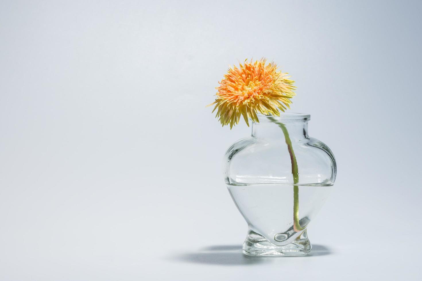 fiore in un vaso trasparente foto