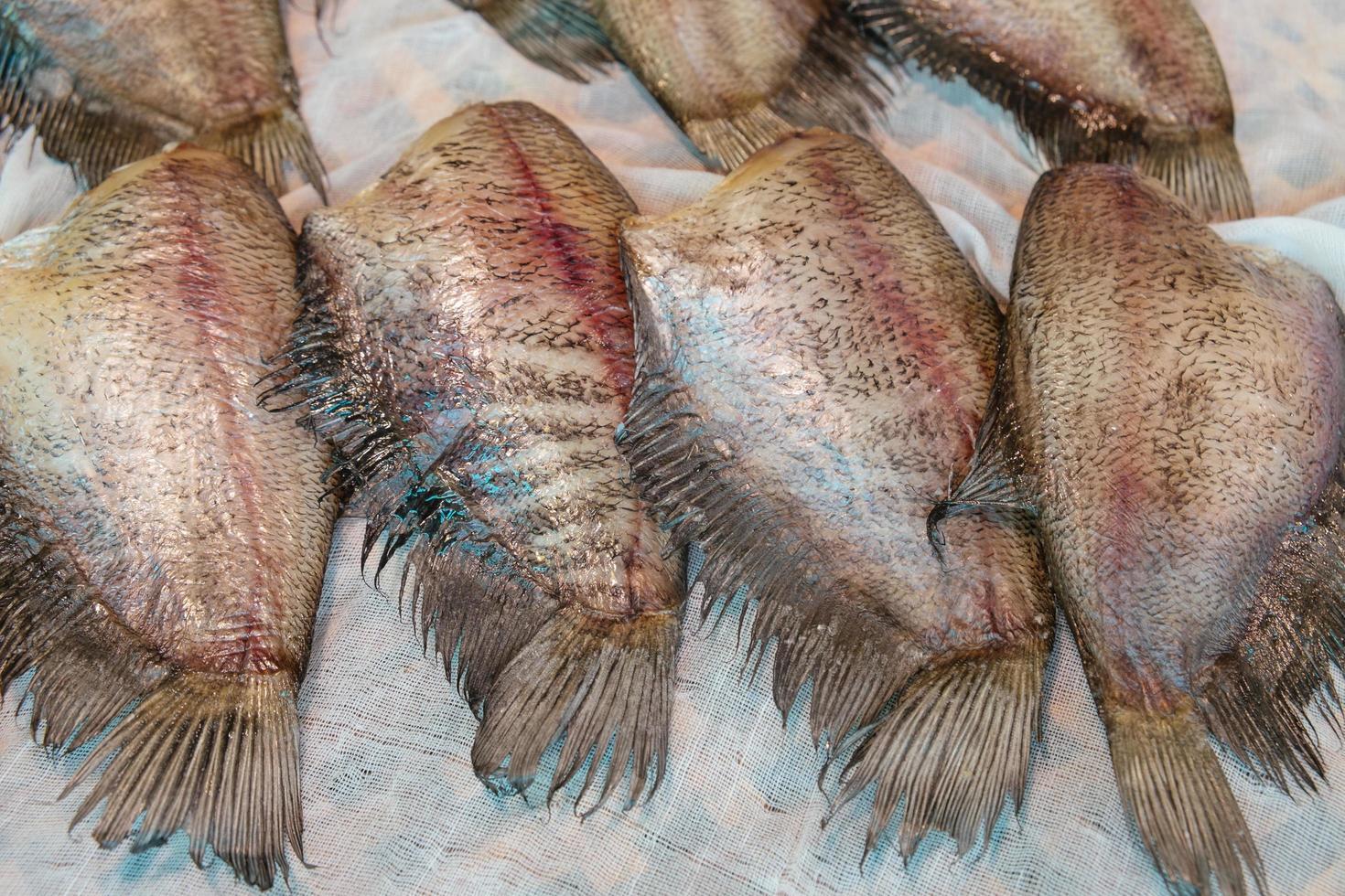Pesci gourami crudi di pelle di serpente salati essiccati al sole foto
