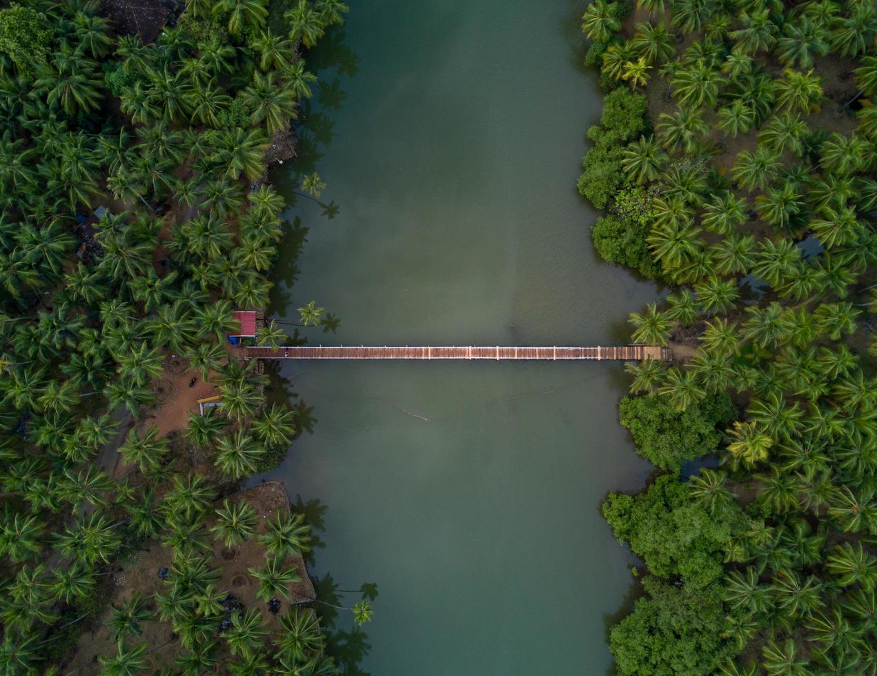 vista aerea sul ponte foto