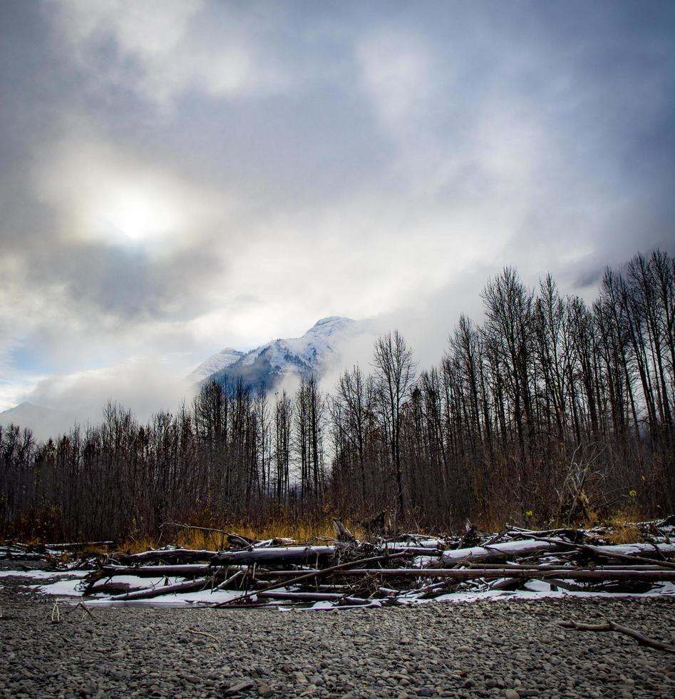 alberi e montagne sotto il cielo nuvoloso foto