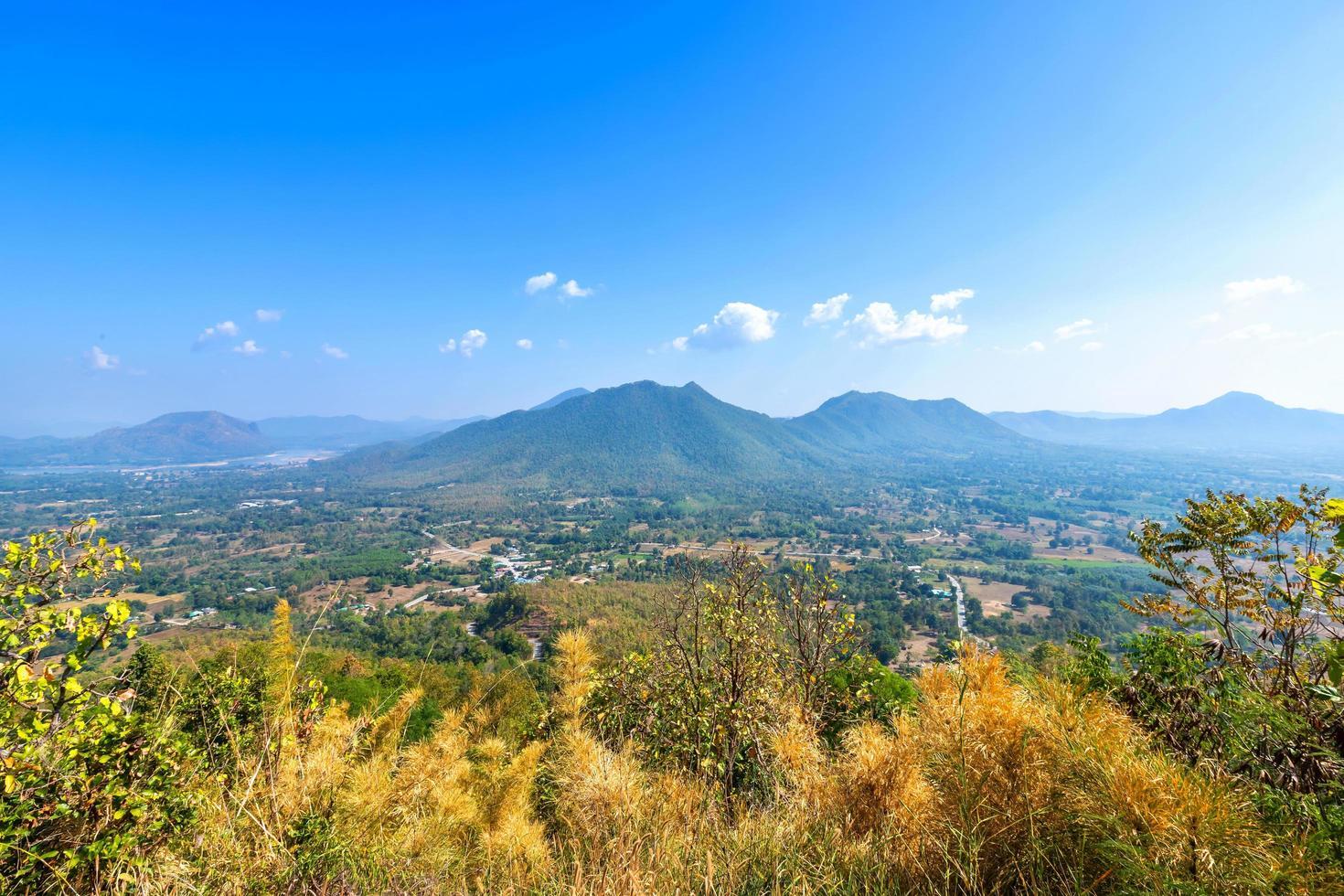 foresta phu thok park della catena montuosa foto