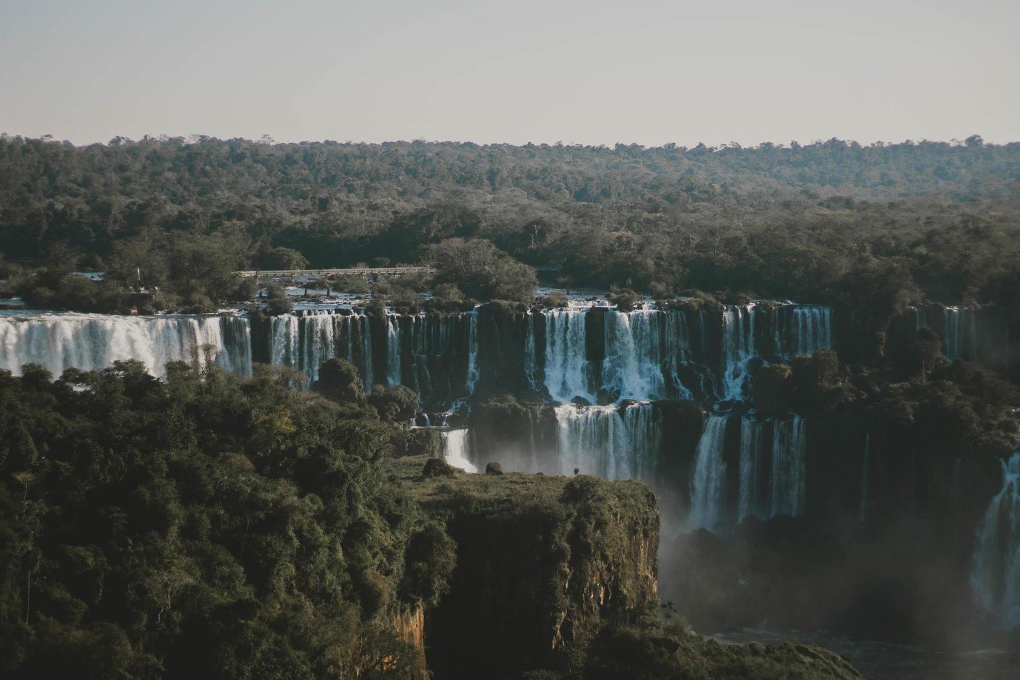 foto aerea della cascata circondata da alberi verdi