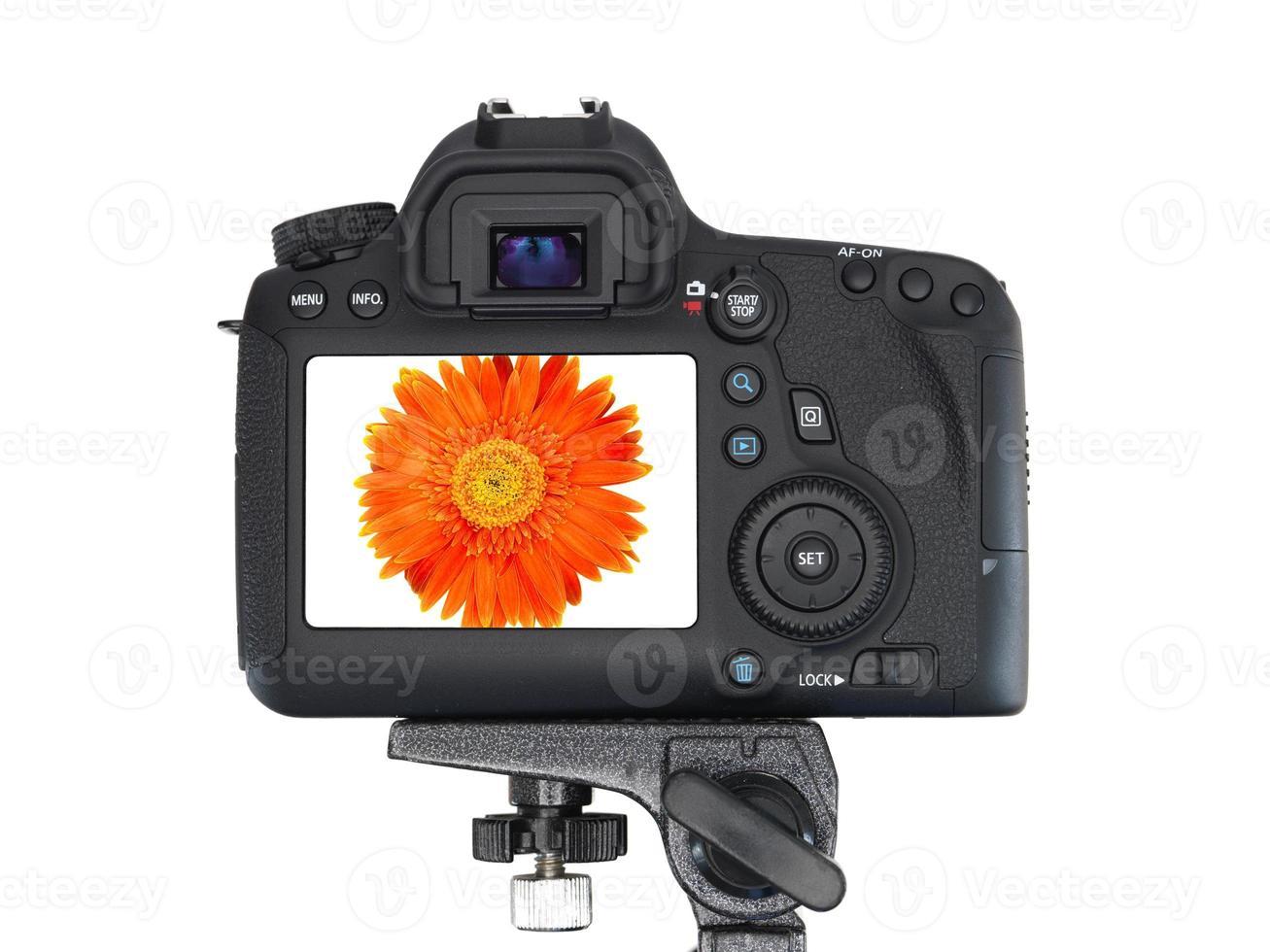fotocamera reflex digitale foto