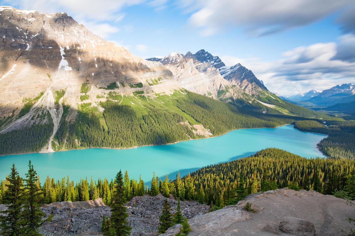 pini verdi vicino a un lago e montagne foto