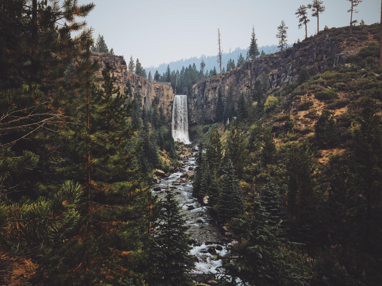 cascata tra alberi e colline foto