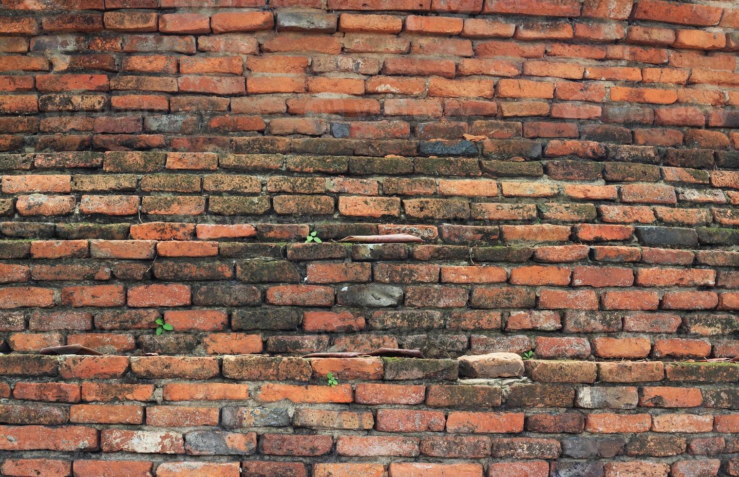 vecchio muro di mattoni texture sporca foto