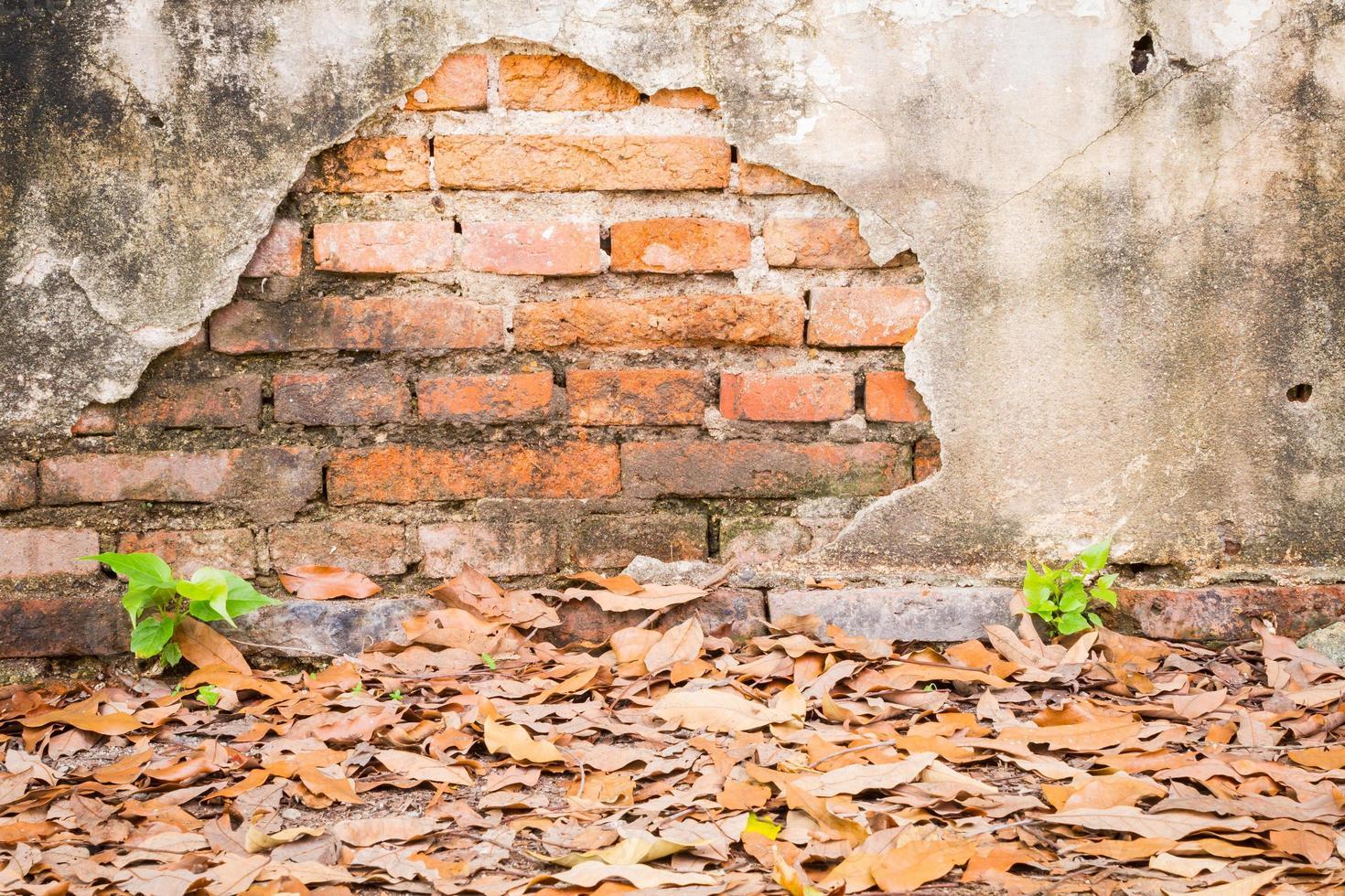 vecchio fondo di muro di mattoni vintage di cemento incrinato. foto