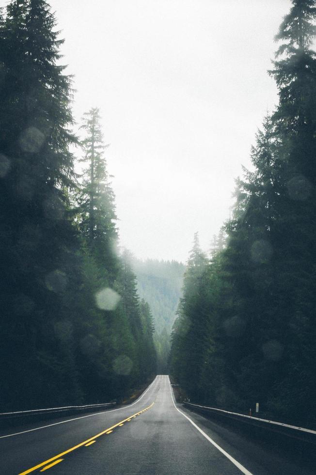 strada asfaltata vuota foto