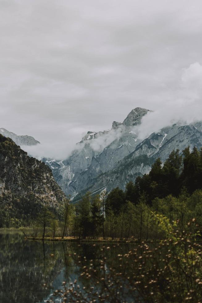 alberi verdi vicino alla montagna innevata foto