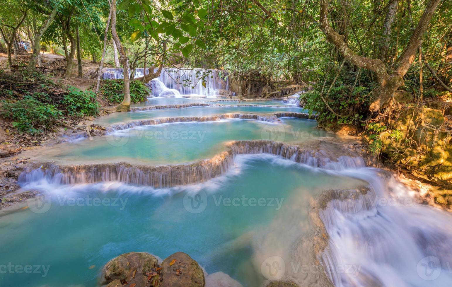 cascata nella foresta pluviale (cascate di tat kuang si in laos. foto