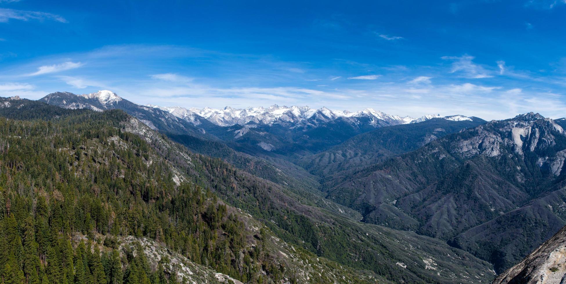 panorama del parco della sequoia foto
