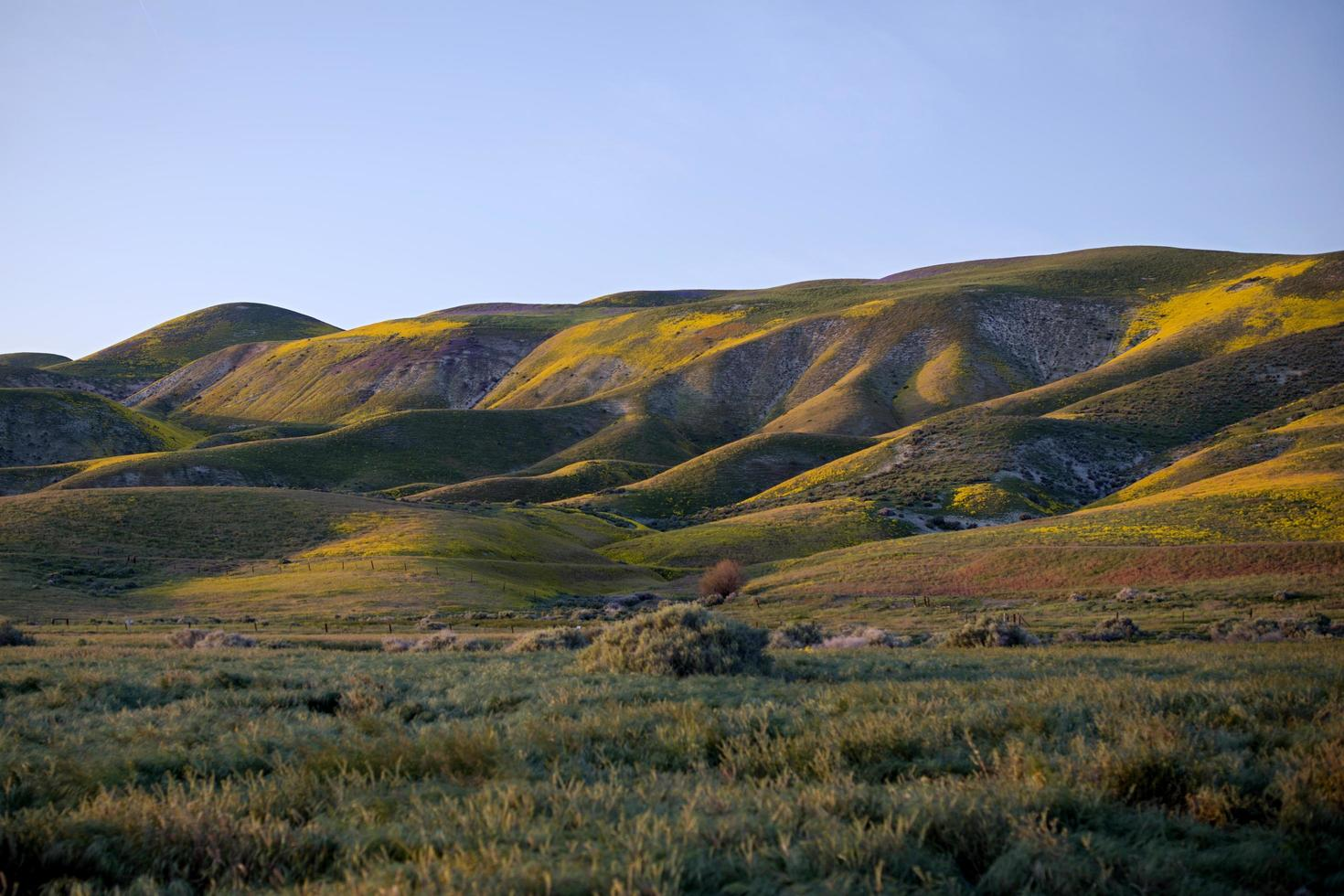 fotografia di paesaggio di montagna verde foto