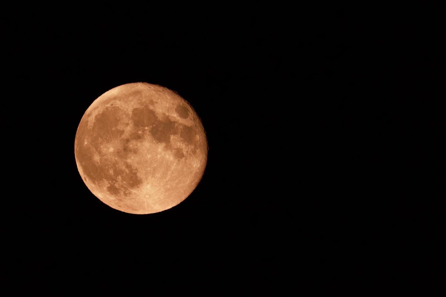 luna piena alla fragola foto