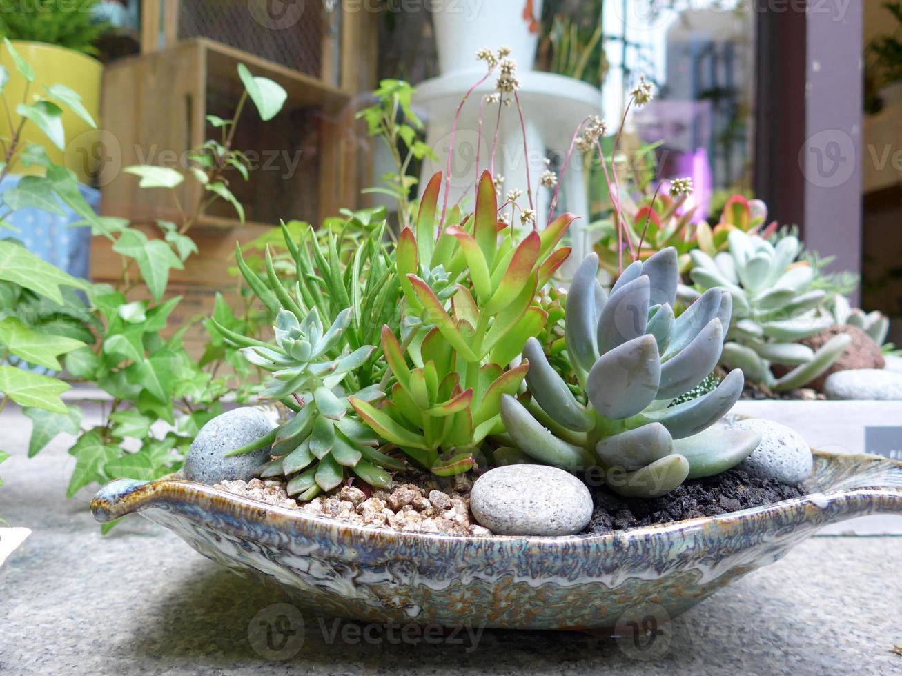 vaso da giardino foto