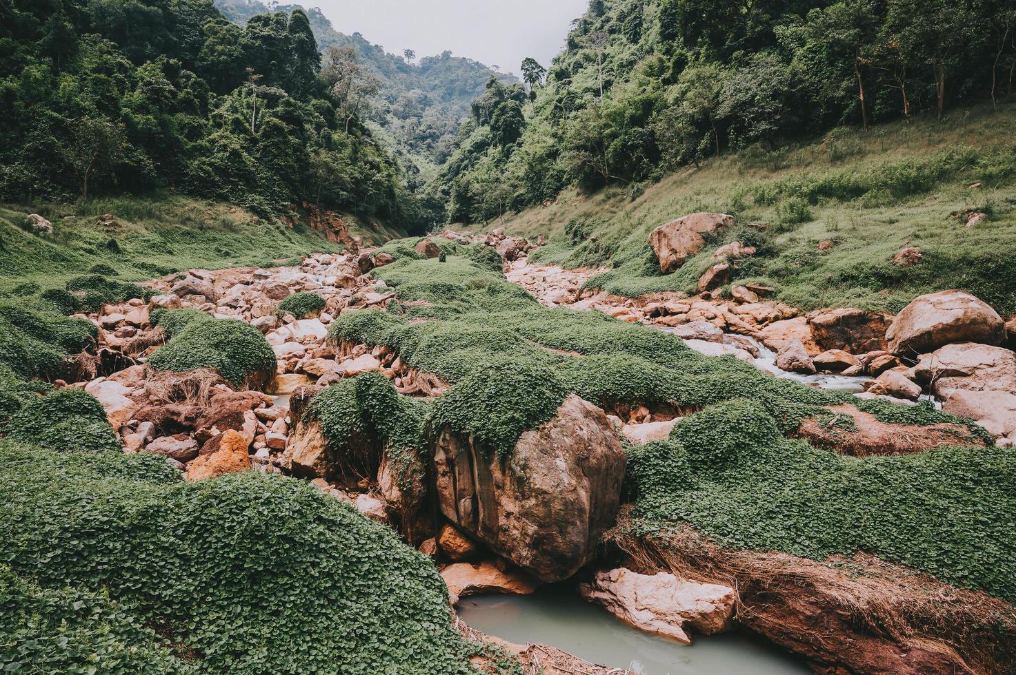 valle del fiume con rocce foto