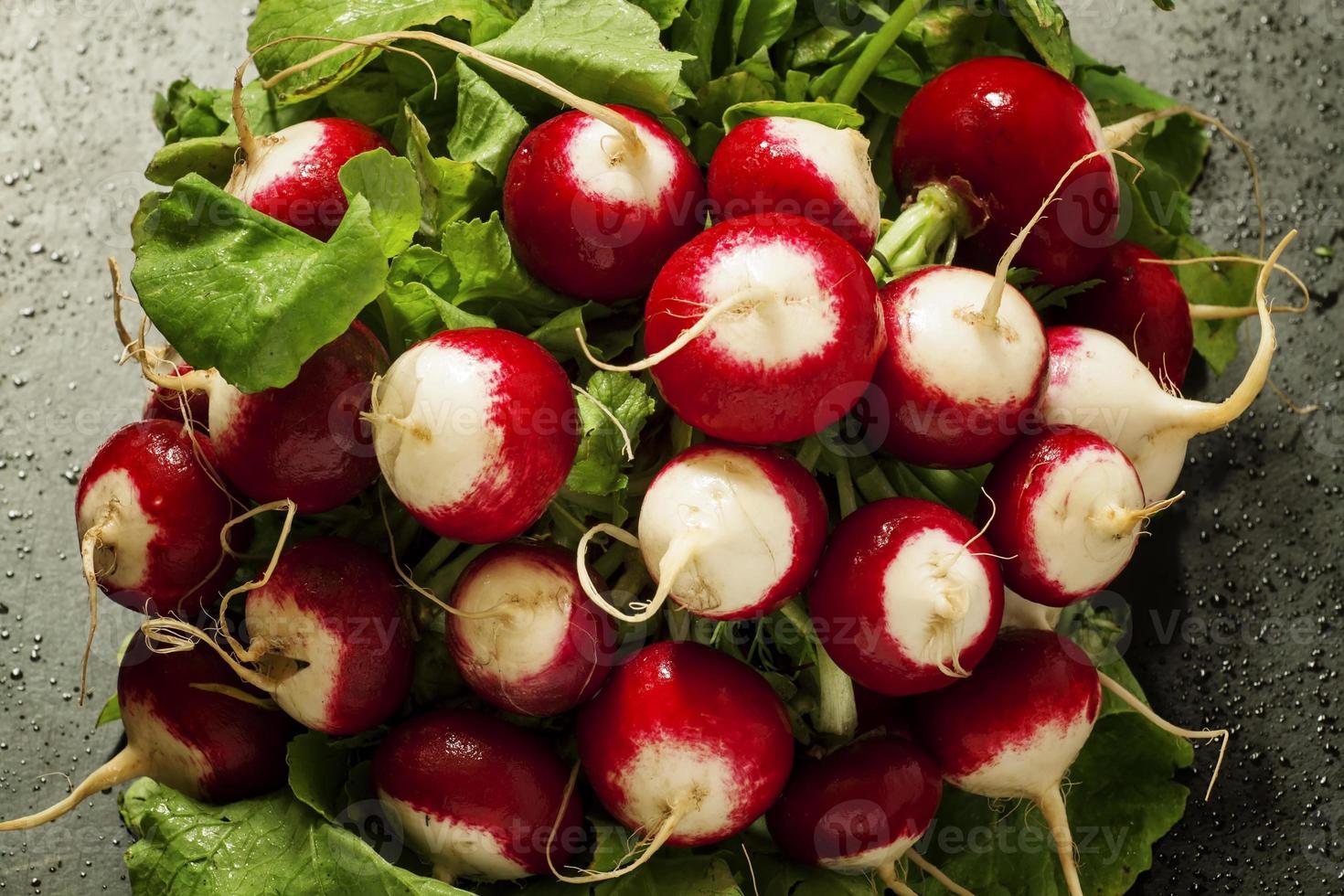 ð concetto di cibo vegano: ravanelli con gocce d'acqua foto