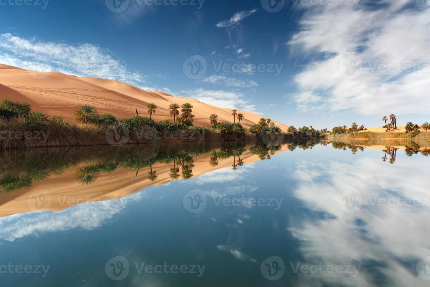 oasi foto