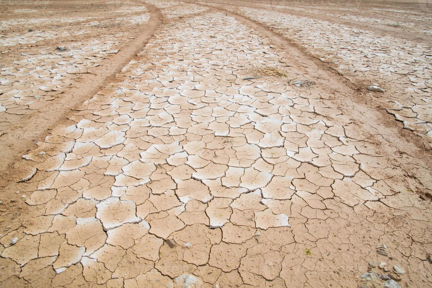 terra asciutta incrinata senza acqua foto