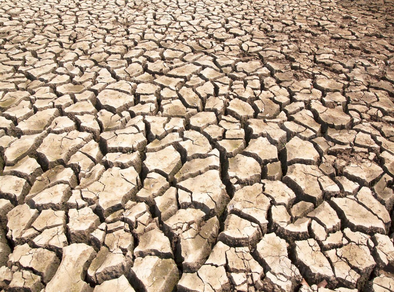 la siccità rompe le fessure del terreno foto