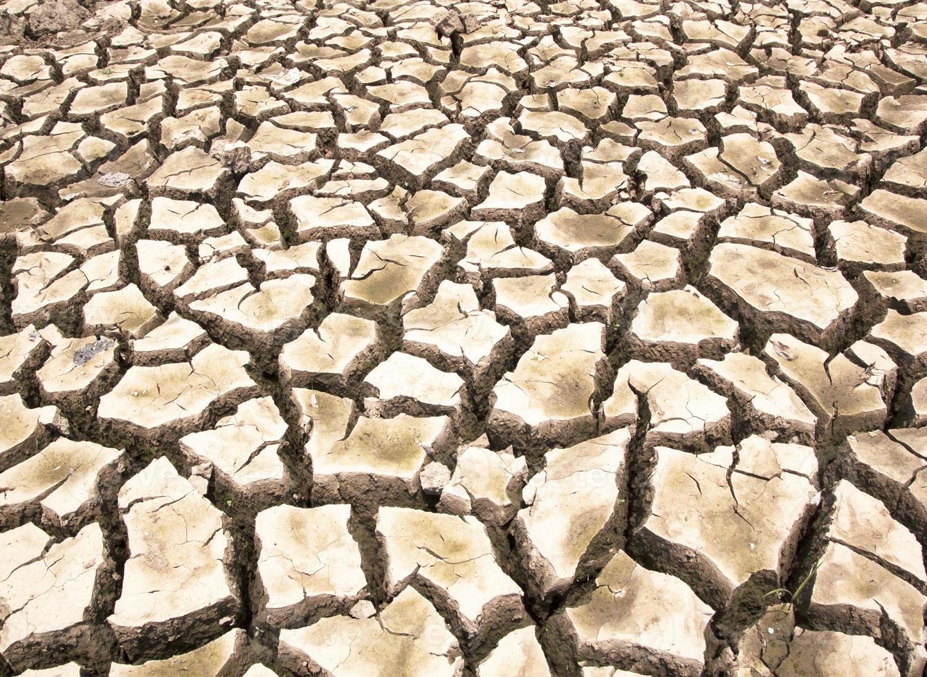 terreno arido dalla siccità foto