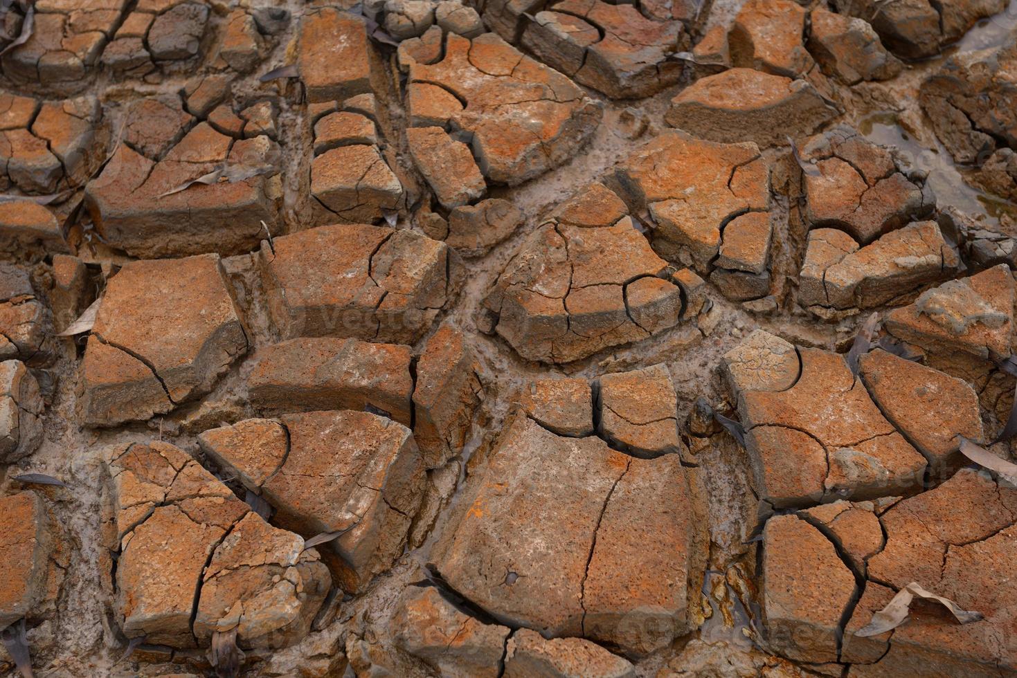 terra di siccità foto