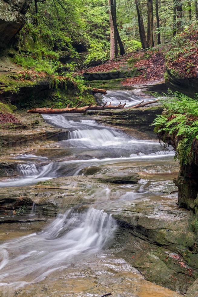 cascata della foresta foto