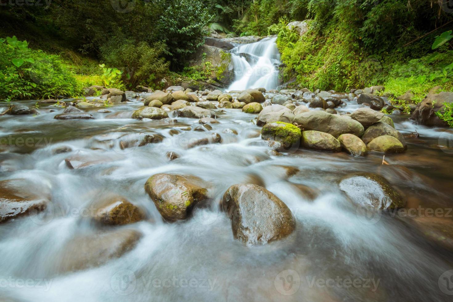 caduta dell'acqua nella foresta foto