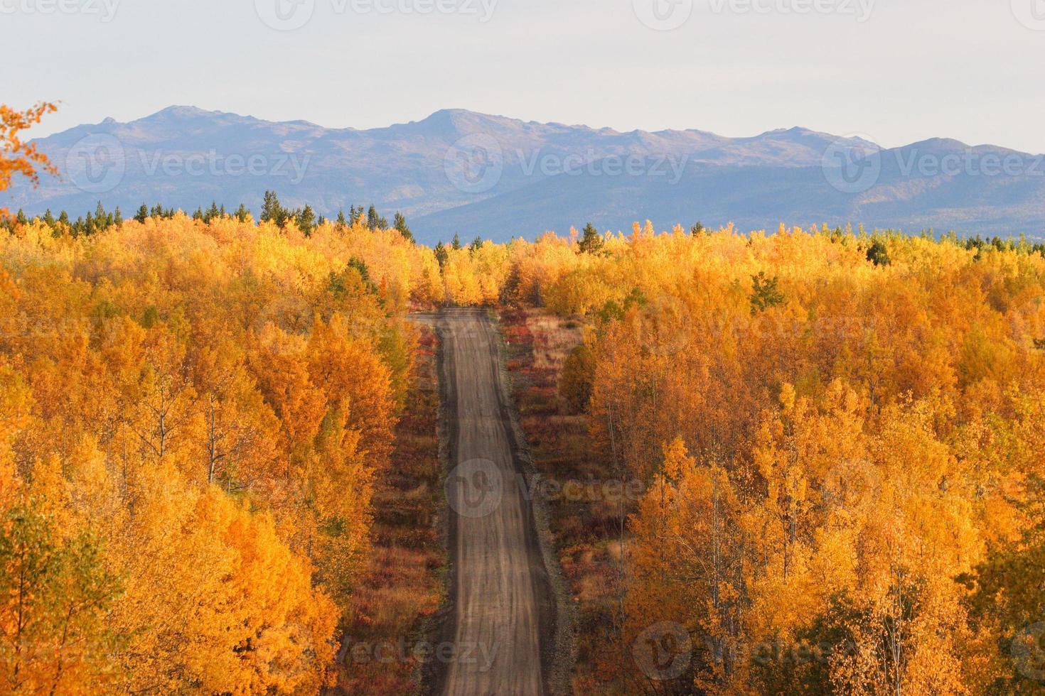 alberi colorati autunnali lungo la strada in British Columbia foto