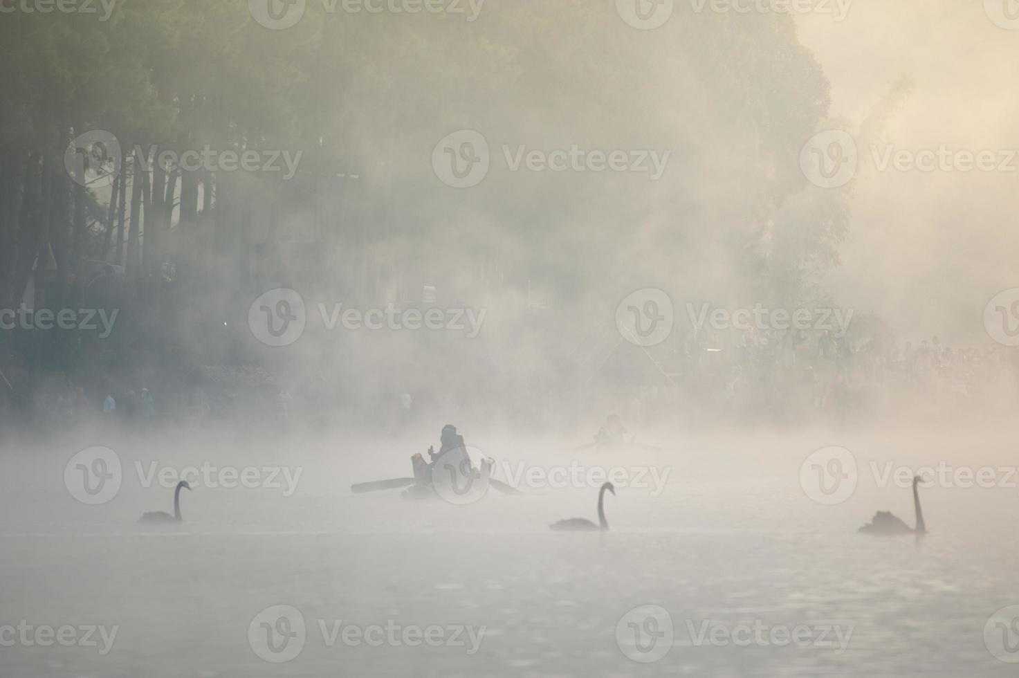 nebbia con la luce del sole a pang oung mae hong son, thailandia foto