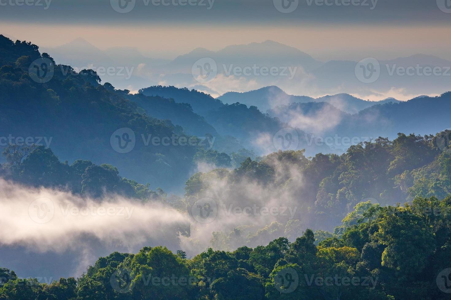 nebbia mattutina a catena montuosa tropicale, Thailandia foto