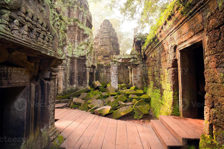 Tempio di Ta Prohm, Angkor, Cambogia foto