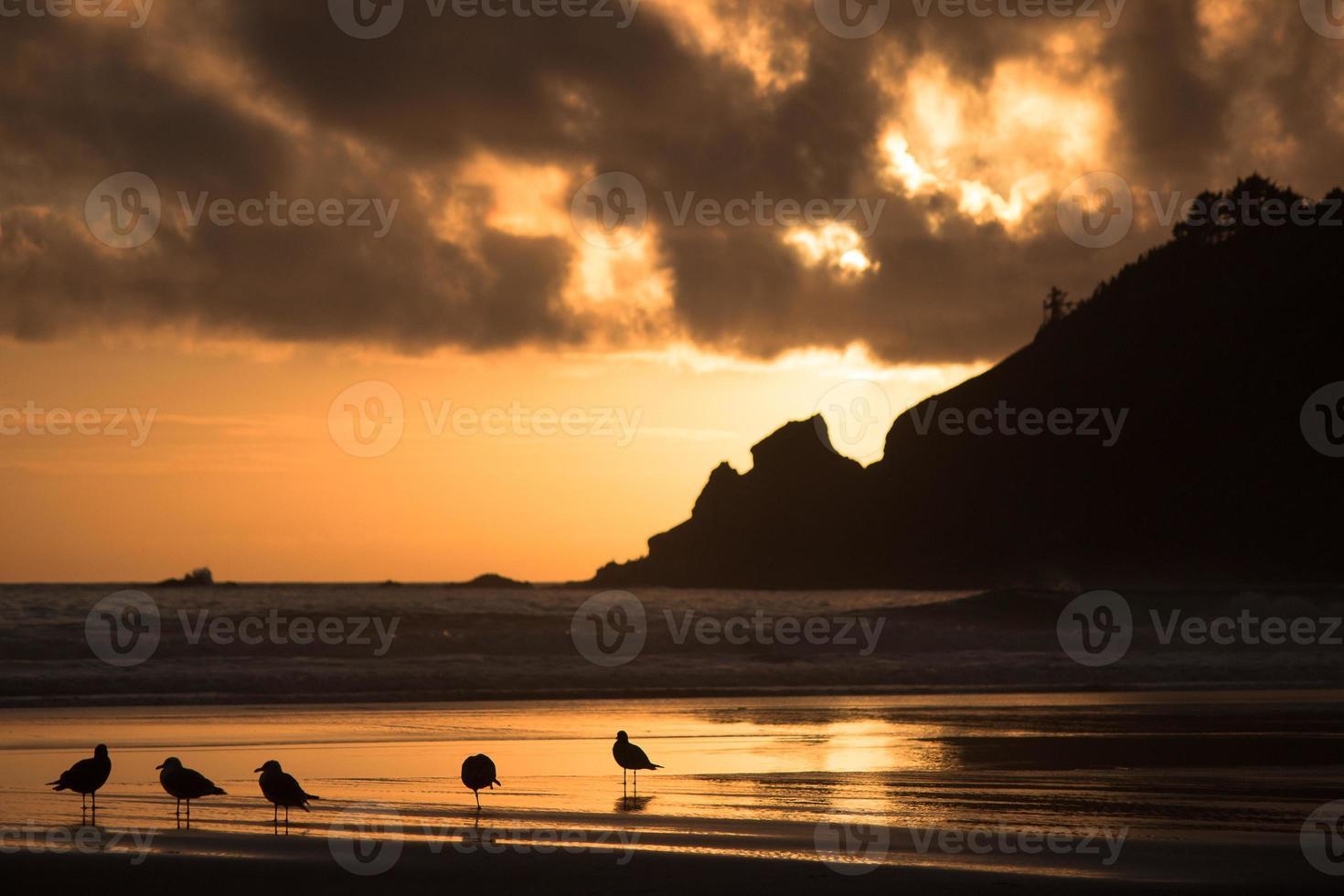 tramonto a breve spiaggia di sabbia sulla costa dell'Oregon foto