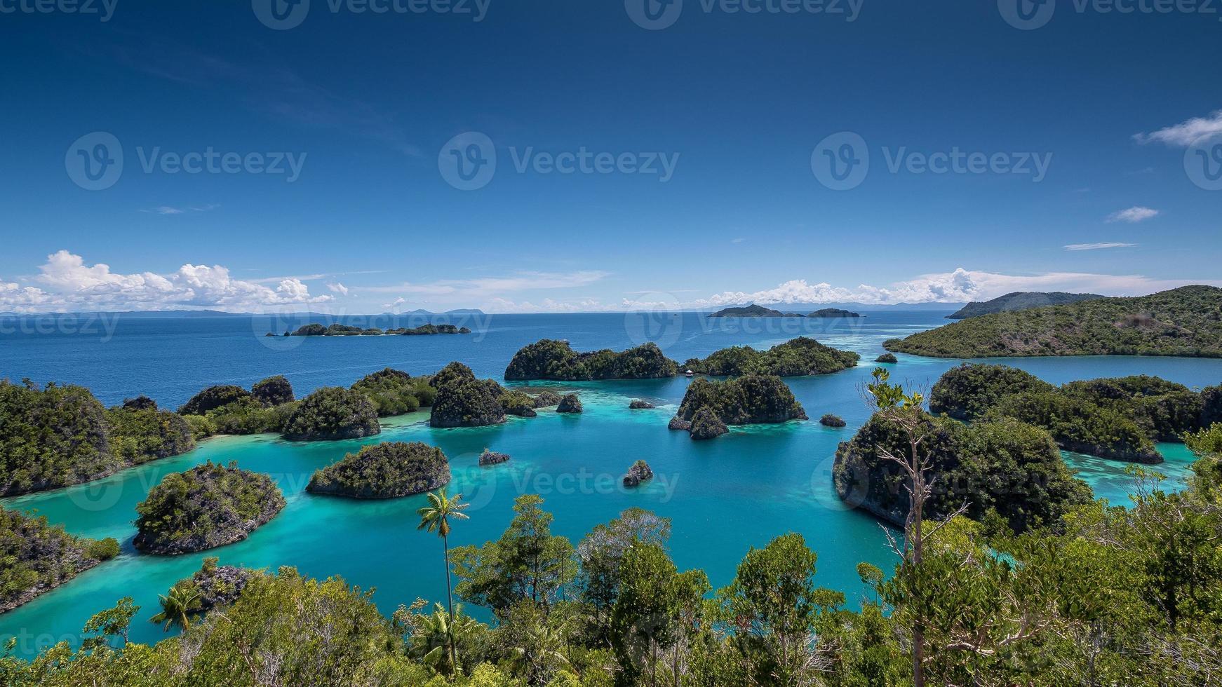 isola di calcare nella laguna, raja ampat, indonesia 01 foto