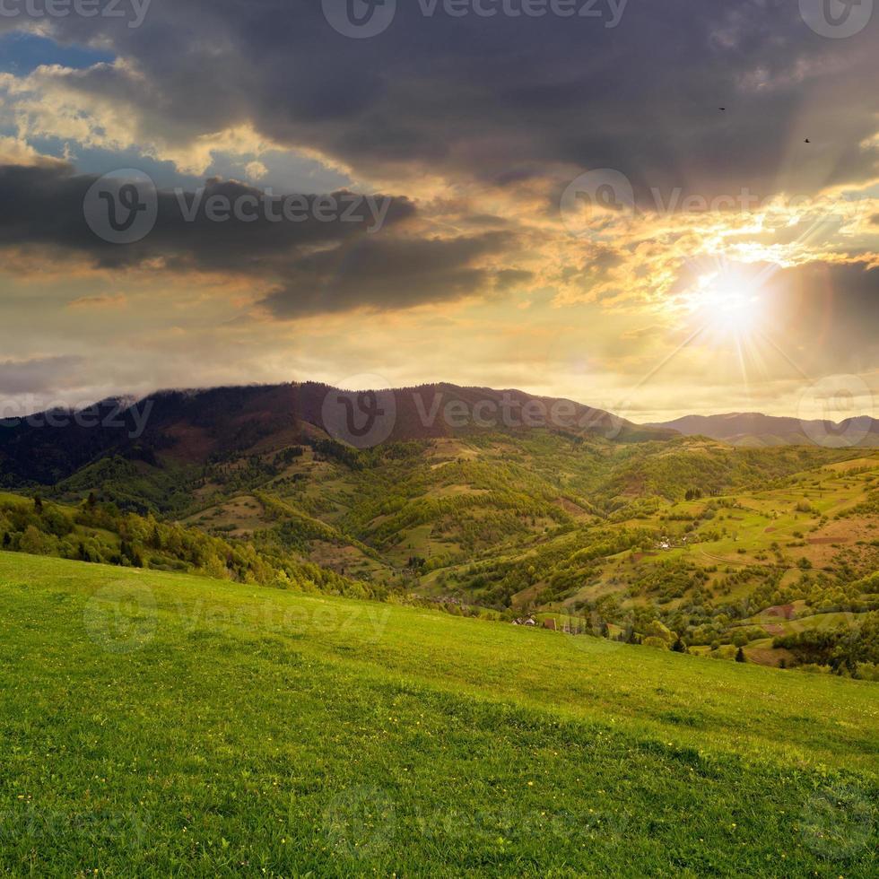 alberi di pino vicino a valle in montagna su una collina al tramonto foto