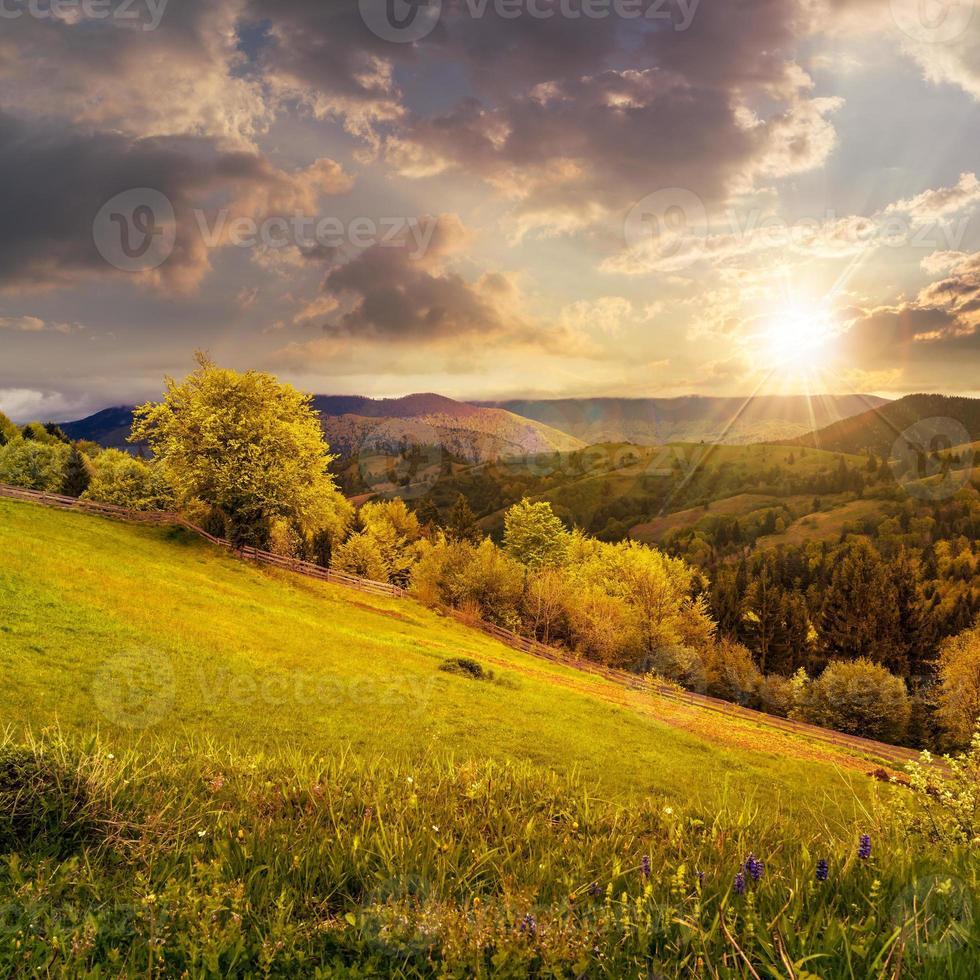 recinzione sul prato di una collina in montagna al tramonto foto