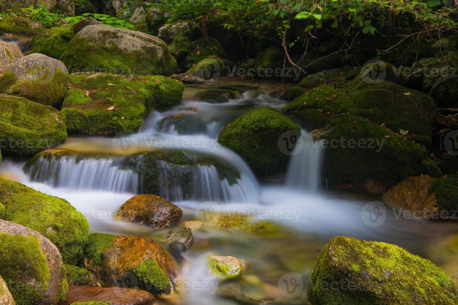 torrente in valle pesio foto