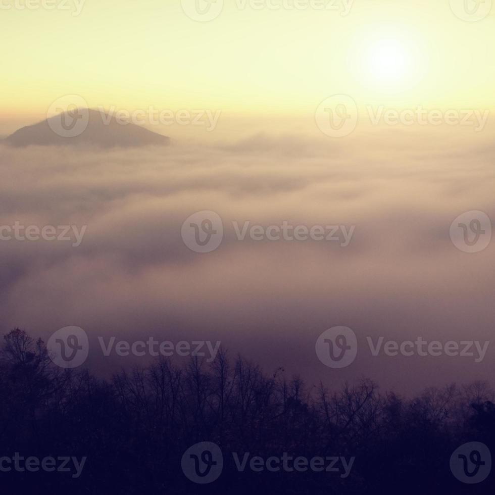 alba nebbiosa in una campagna. collina aumentata dalla nebbia foto