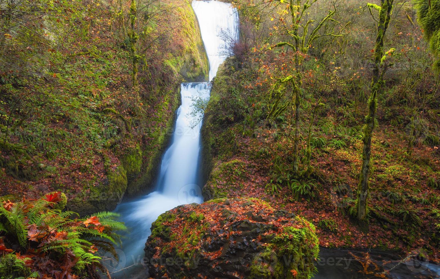 autunno al velo nuziale cade gola del fiume columbia foto