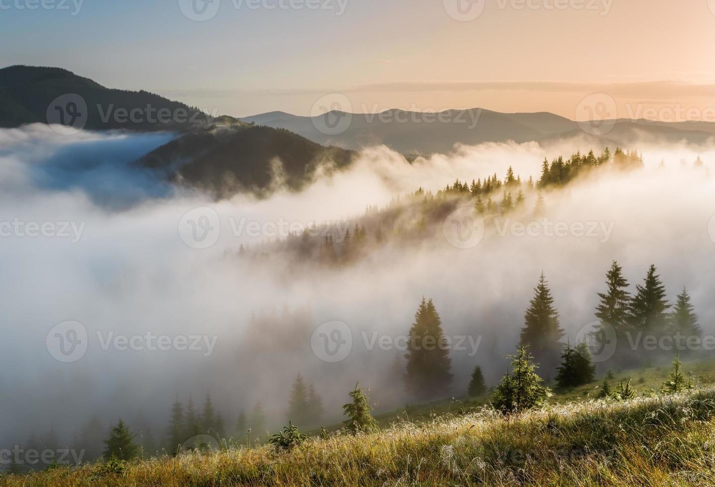 monti carpazi. le pendici dei monti in una nebbia. foto