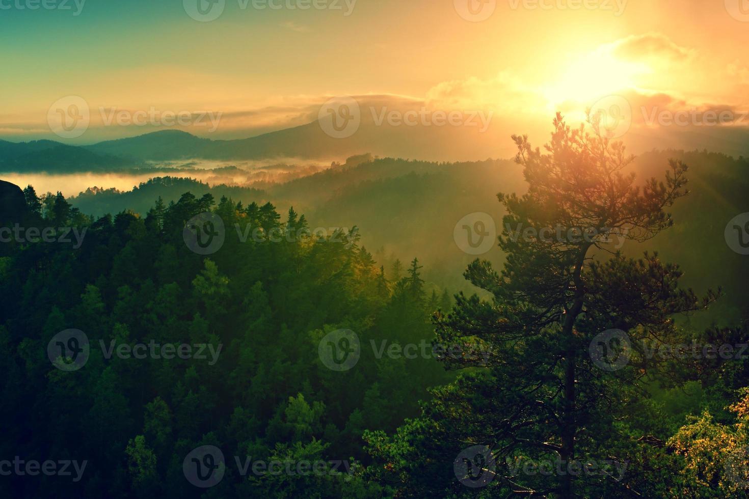 profonda valle nebbiosa all'alba. autunno nebbioso e nebbioso mattina foto