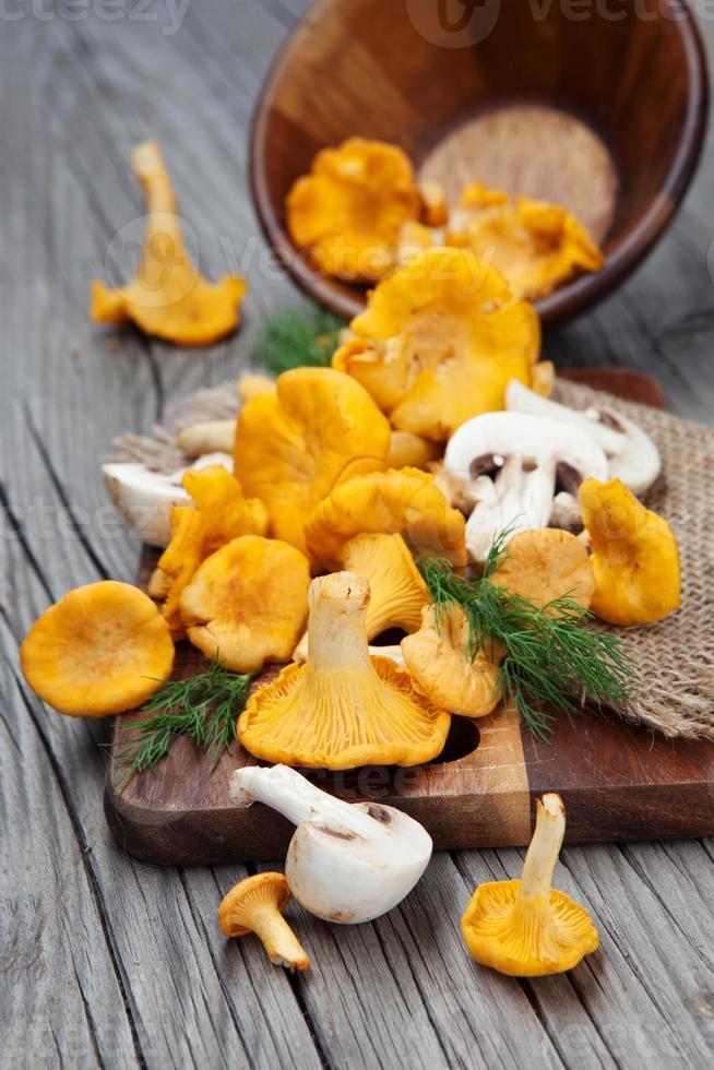 funghi su un tavolo di legno foto