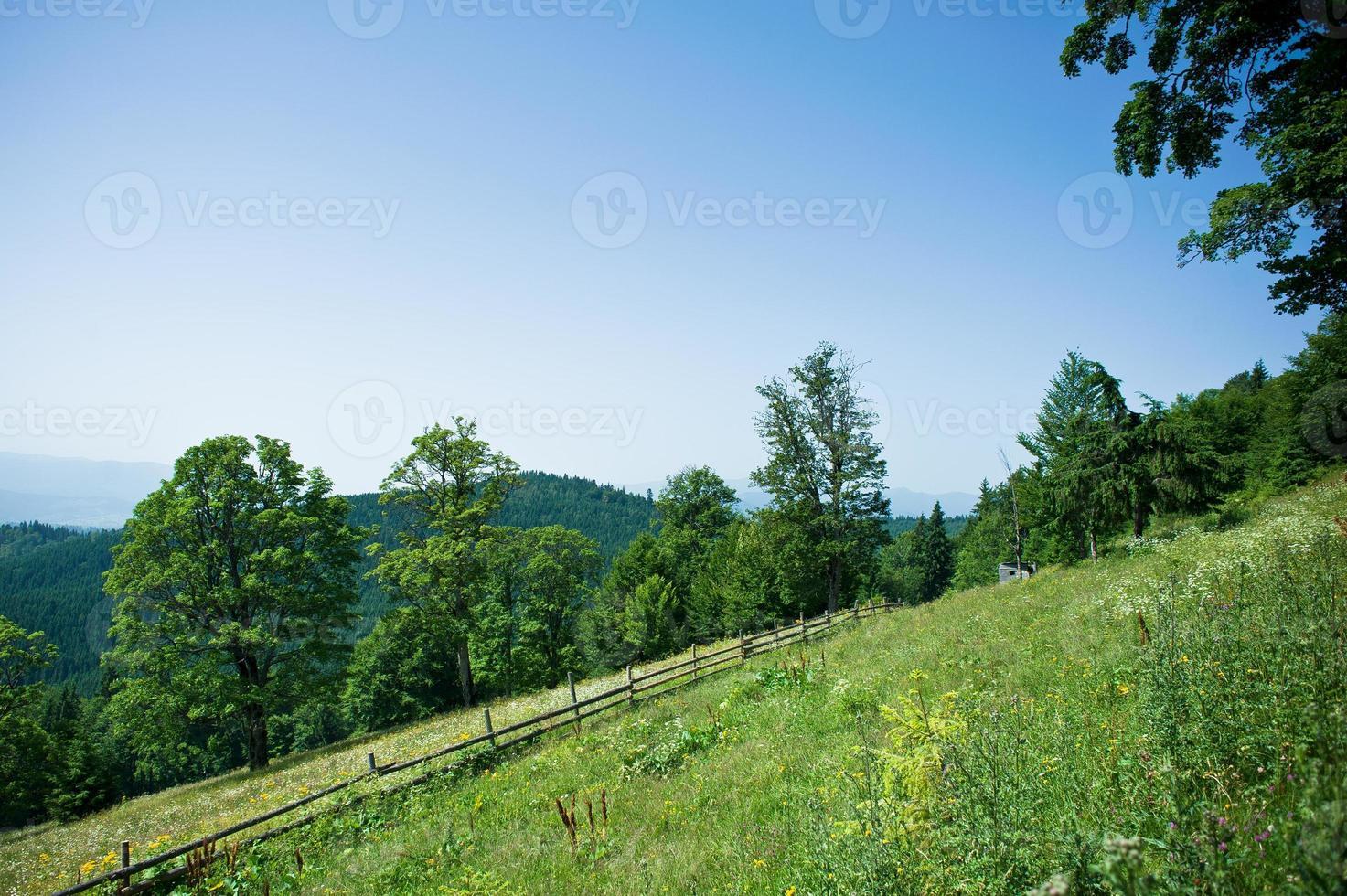 paesaggio primaverile in montagna. foto