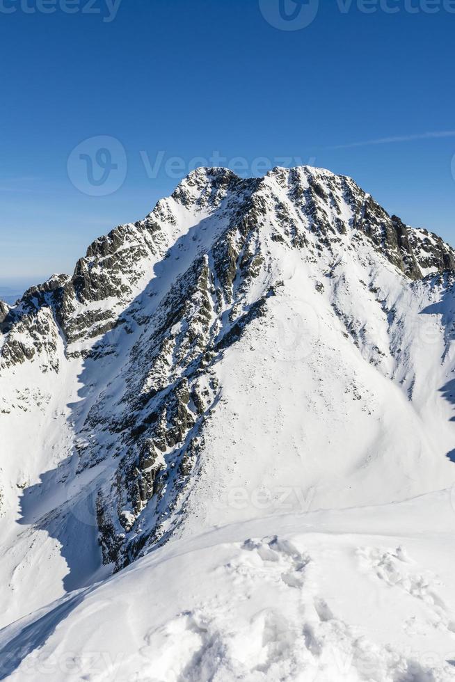 picco di ghiaccio (lodowy szczyt, ladovy stit) foto
