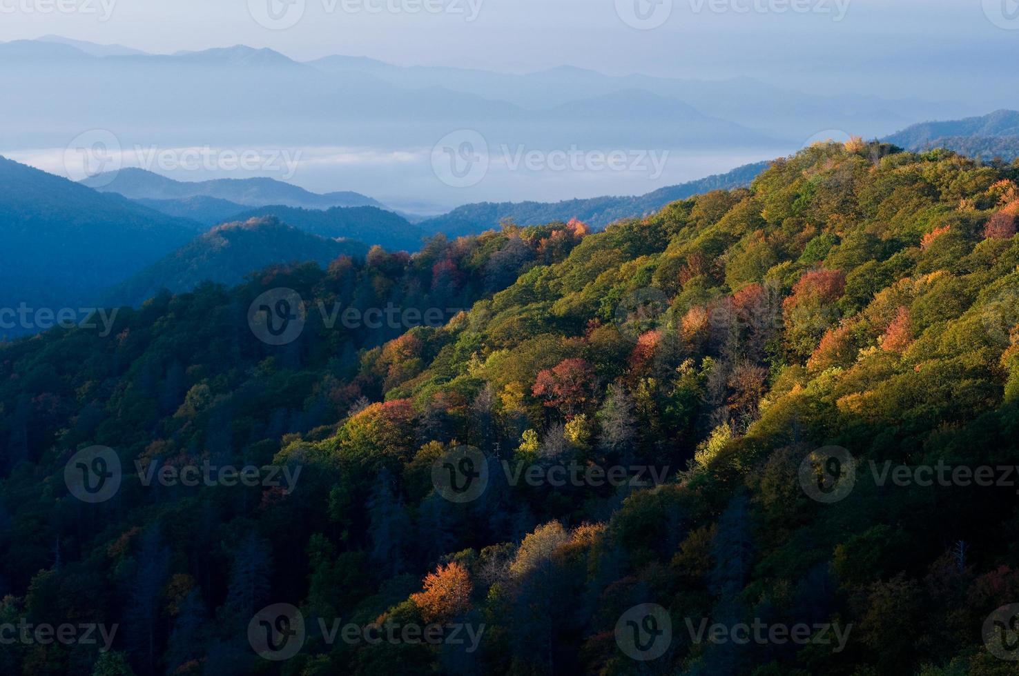 parco nazionale delle montagne fumose foto