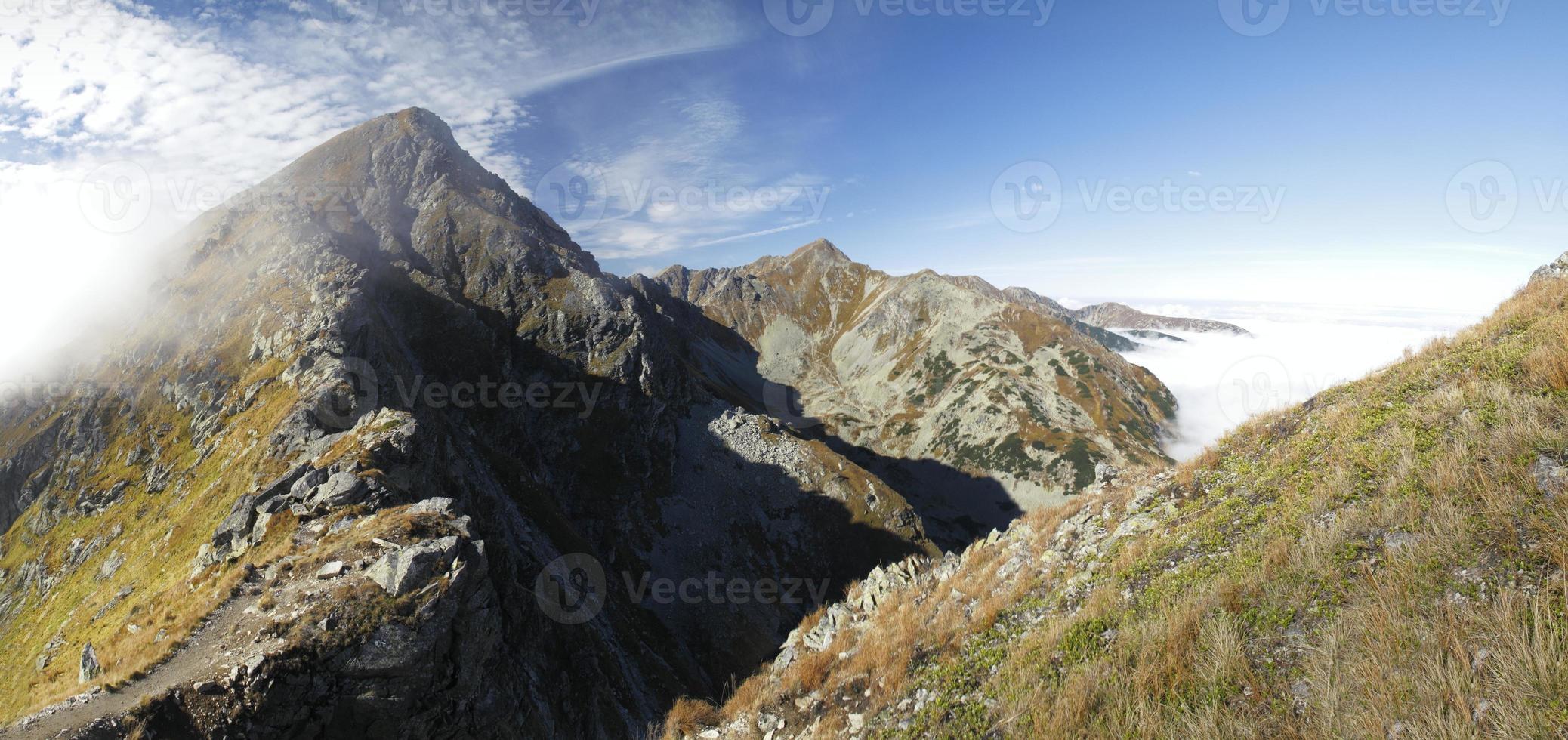 forma plattiva ostry rohac nei monti tatra in slovacchia foto