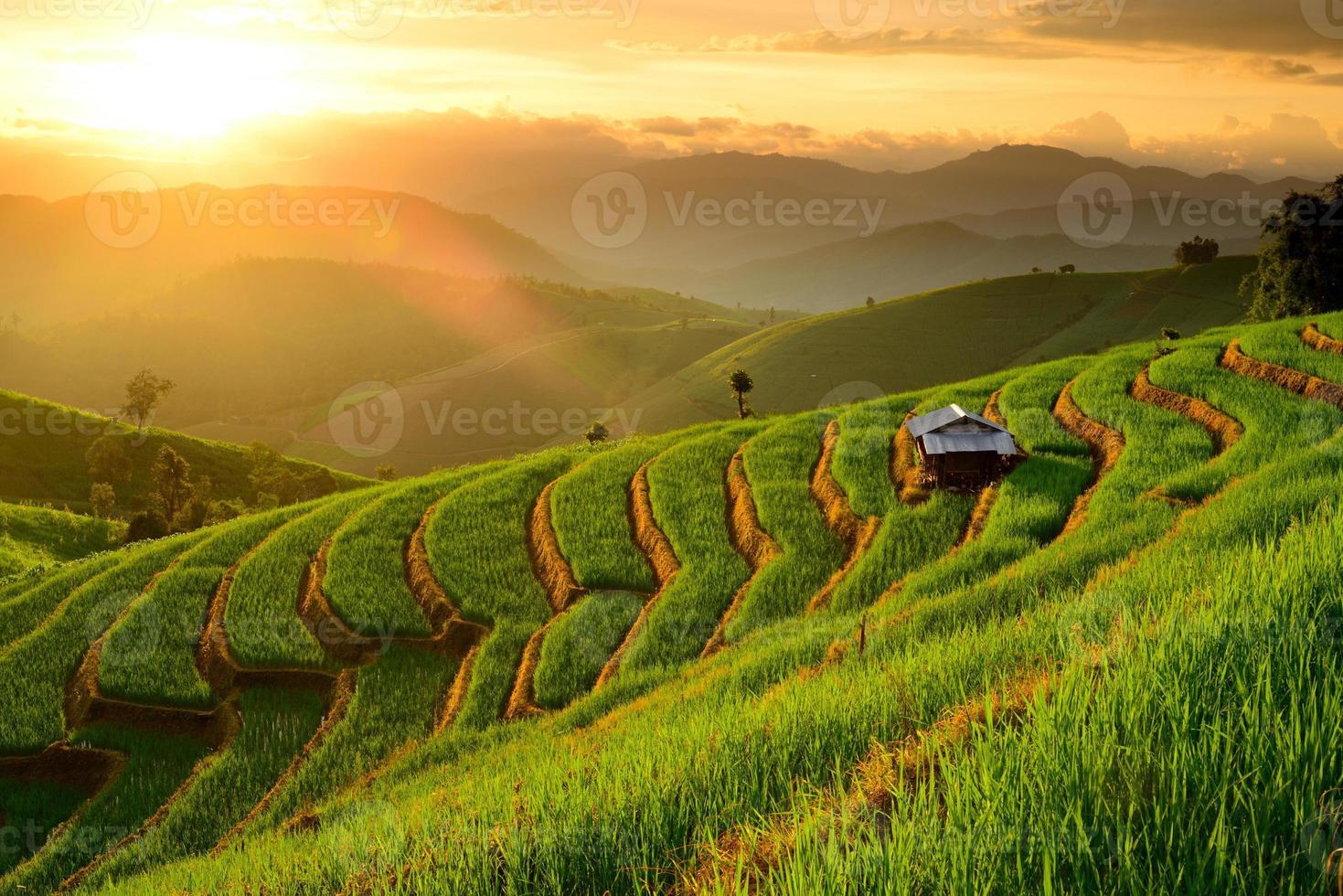 terrazze di riso con sfondo tramonto al divieto papongpieng chiangmai foto