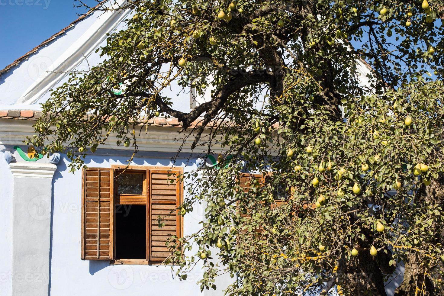 casa tradizionale di viscri, transilvania foto