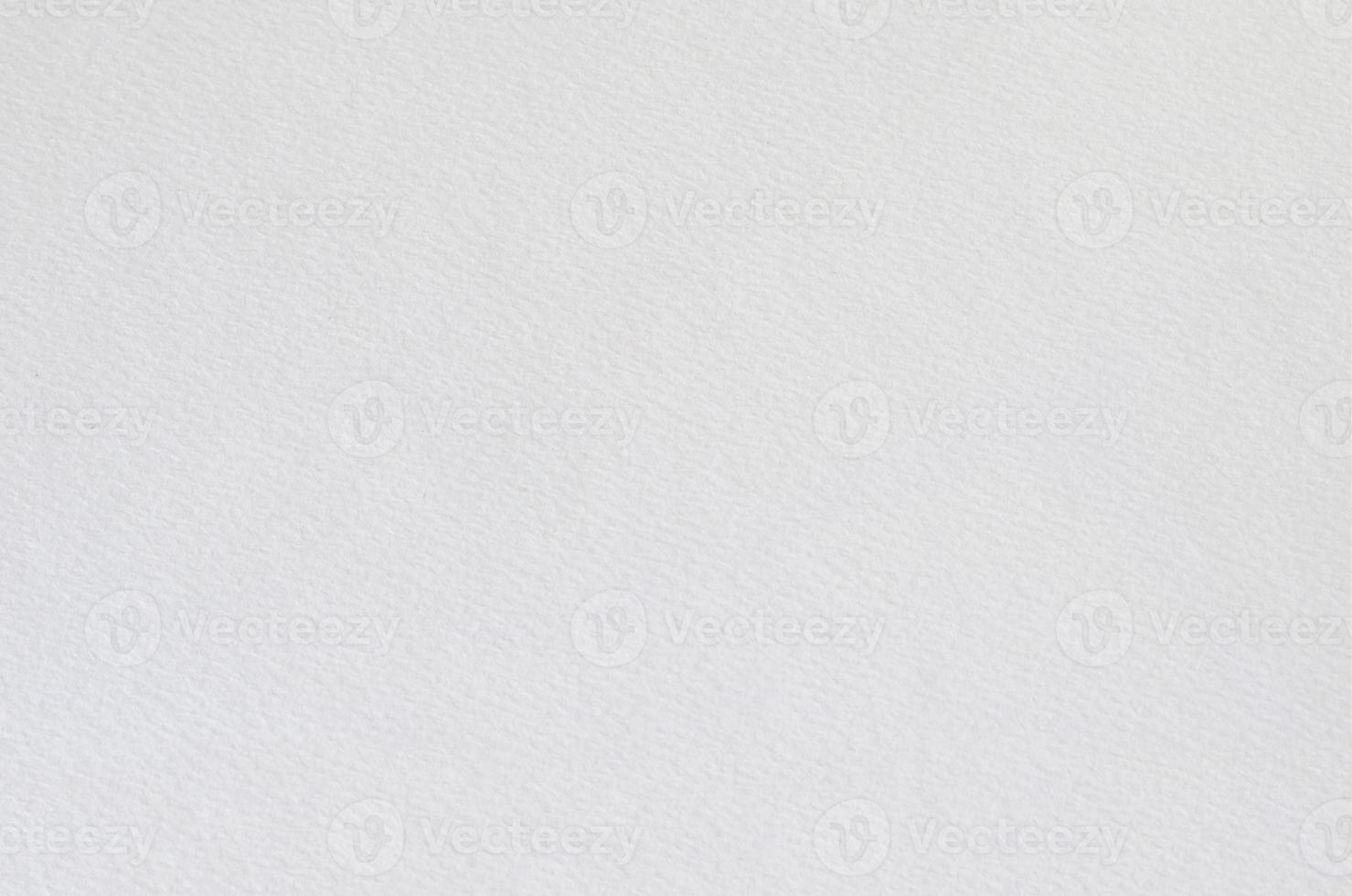 trama del libro bianco foto