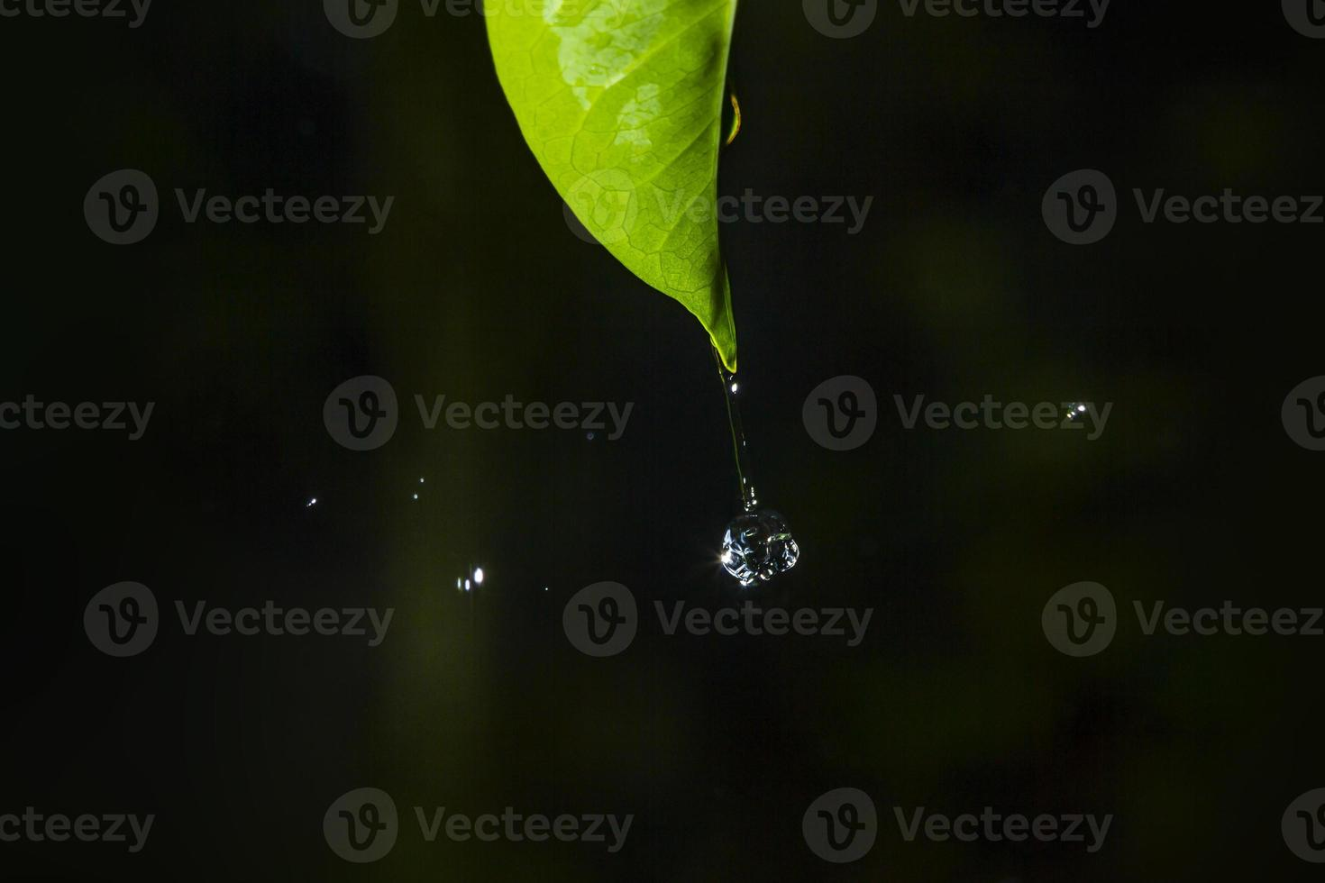 goccia d'acqua foto