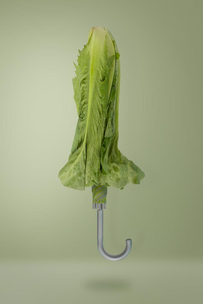 ombrello vegetale verde foto